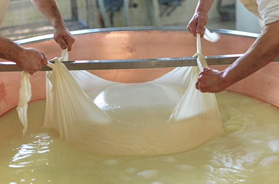 G. Cravero - Parmigiano Reggiano Production
